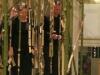le rire du bambou